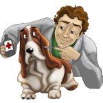 Servizio veterinario 24/7
